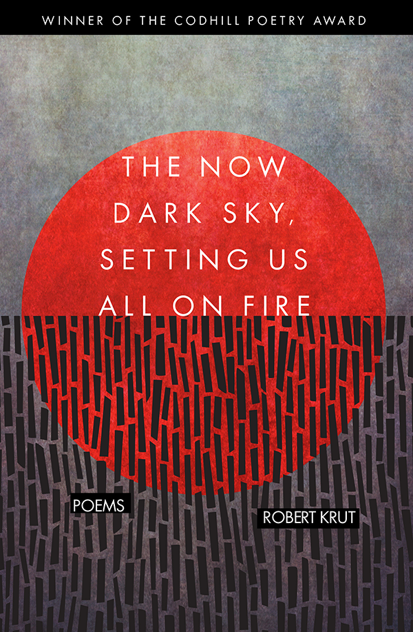 The Now Dark Sky book cover